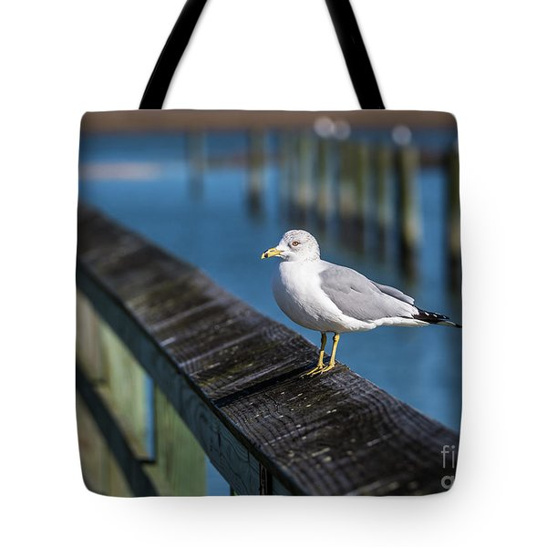 Seagull On A Railing II Tote Bag