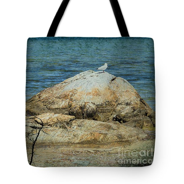 Tote Bag featuring the photograph Seagull On A Rock by Elaine Teague