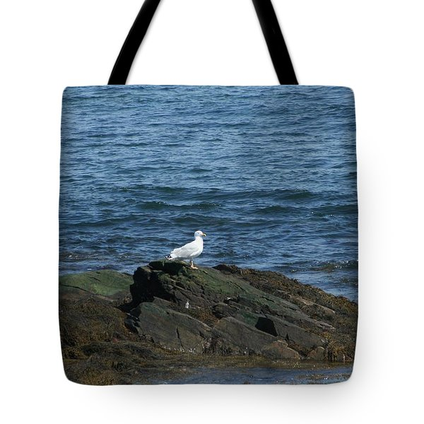 Tote Bag featuring the digital art Seagull On The Rocks by Barbara S Nickerson