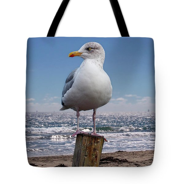 Seagull On The Shoreline Tote Bag by Phil Perkins