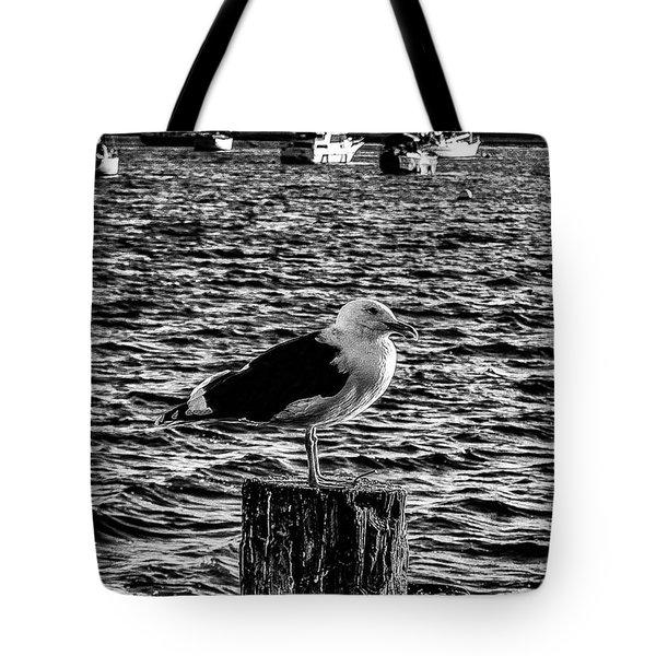 Seagull Perch, Black And White Tote Bag