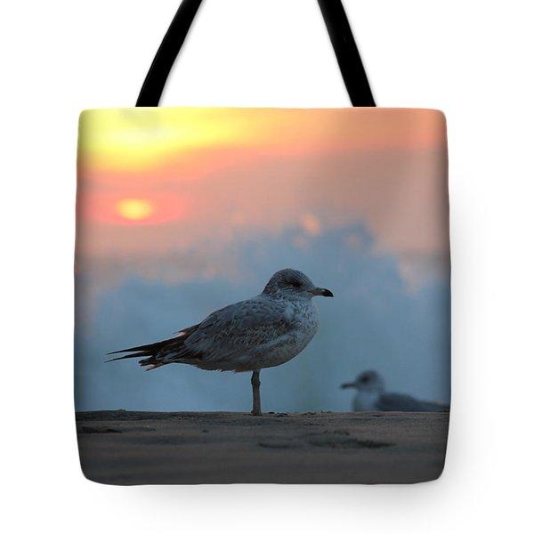Seagull Seascape Sunrise Tote Bag by Robert Banach