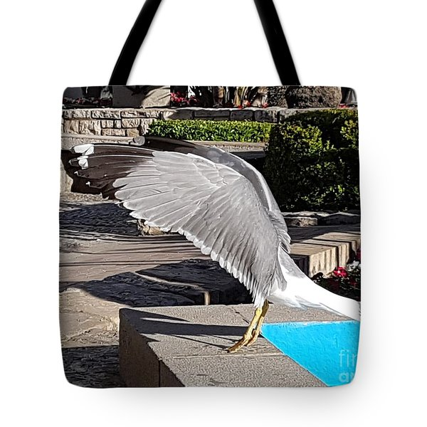 Seagull Showing Off Tote Bag