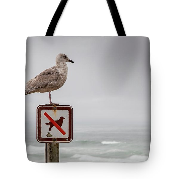 Seagull Standing On Sign And Looking At The Ocean Tote Bag