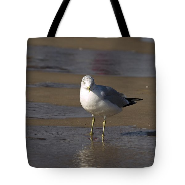 Tote Bag featuring the photograph Seagull Standing by Tara Lynn