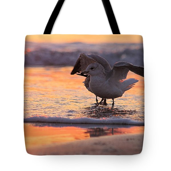 Seagull Stretch At Sunrise Tote Bag