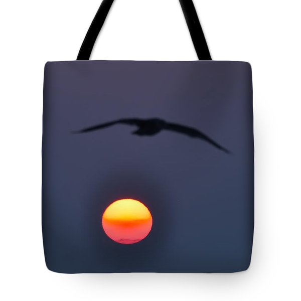 Seagull Sun Tote Bag by Bill Cannon