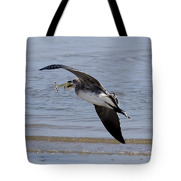 Seagull With Shrimp Tote Bag