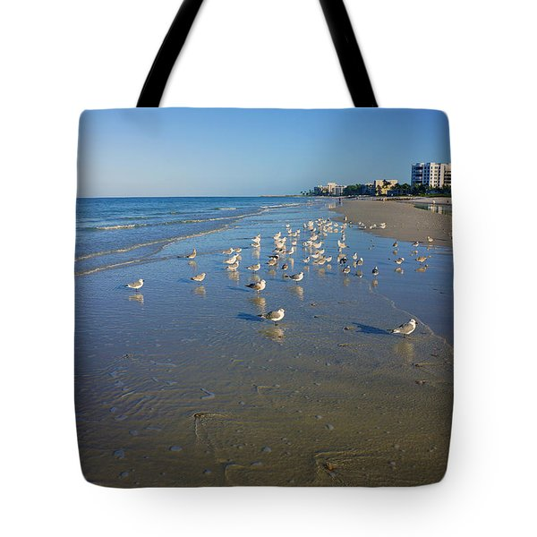 Seagulls And Terns On The Beach In Naples, Fl Tote Bag by Robb Stan