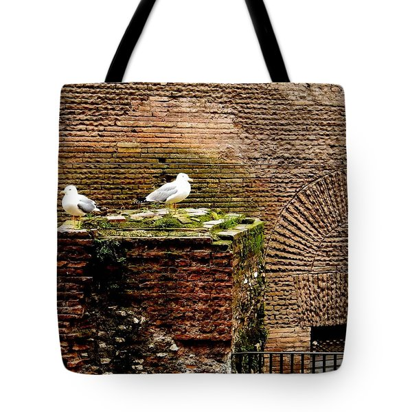 Seagulls By The Pantheon Tote Bag