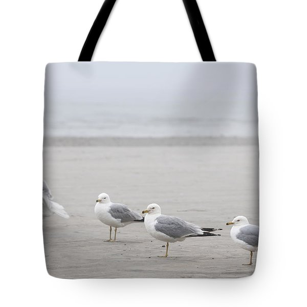 Seagulls On Foggy Beach Tote Bag