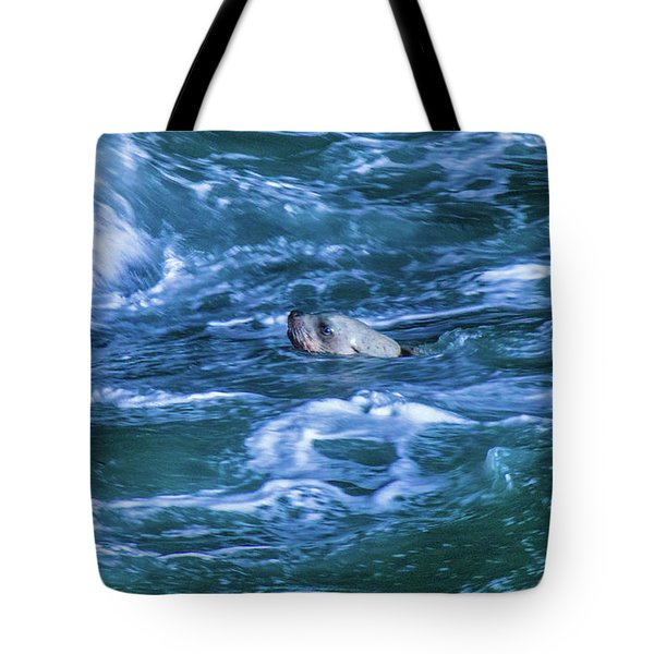 Tote Bag featuring the photograph Seal In Teh Water by Jonny D