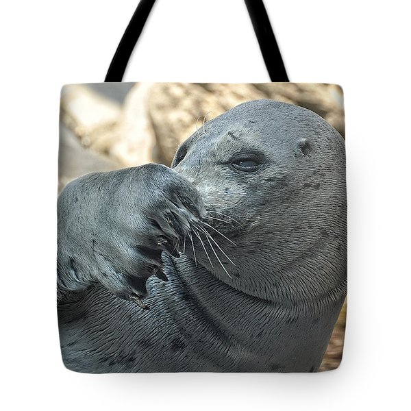 Seal Love I Got My Nose Tote Bag