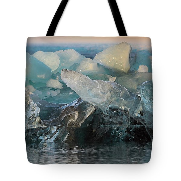 Seal Nature Sculpture Tote Bag