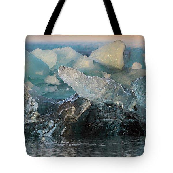 Seal Nature Sculpture Tote Bag by Allen Biedrzycki