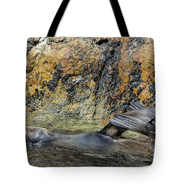 Seal On His Back Tote Bag