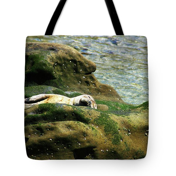 Tote Bag featuring the photograph Seal On The Rocks by Anthony Jones