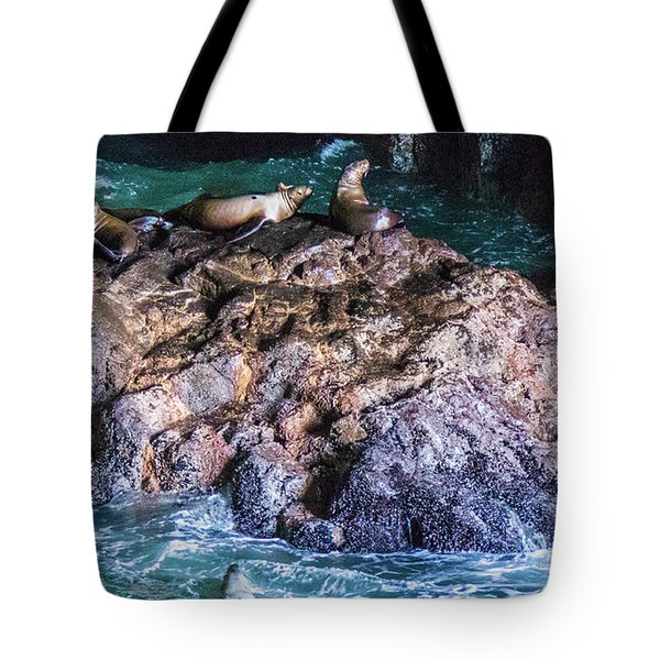Tote Bag featuring the photograph Seal  Rock by Jonny D