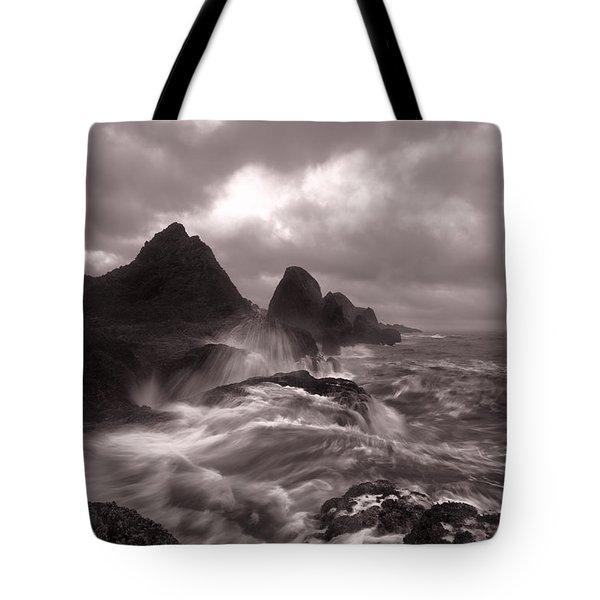 Seal Rock Thunder Tote Bag