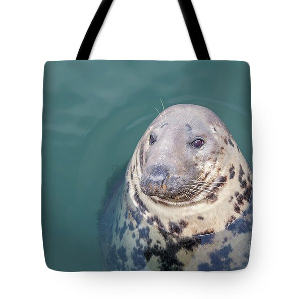 Seal With Long Whiskers With Head Sticking Out Of Water Tote Bag