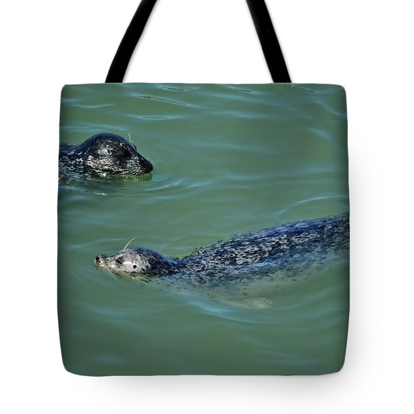 Sealion Friends Tote Bag