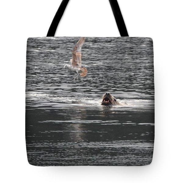 Sealion Vs Seagull Tote Bag
