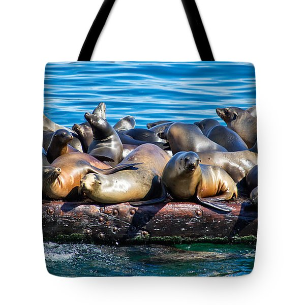 Sealions On A Floating Dock Another View Tote Bag