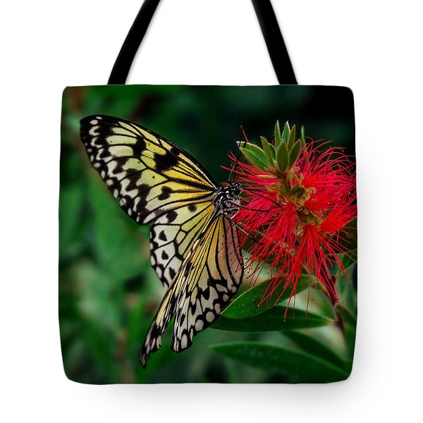 Searching For Nectar Tote Bag