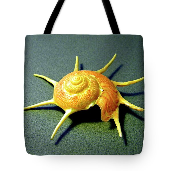 Seashell Guildfordia Yoca Tote Bag by Frank Wilson