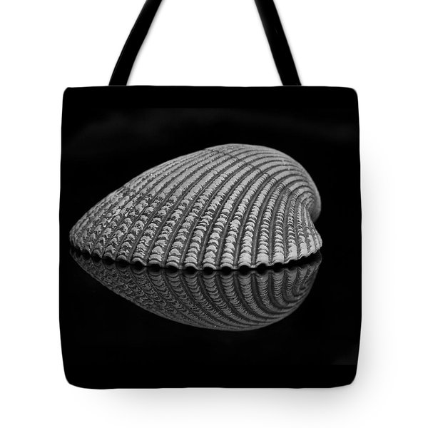 Seashell Study Tote Bag