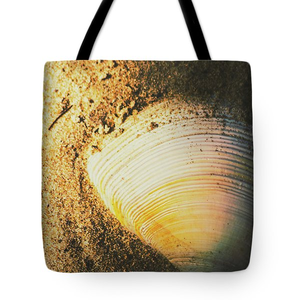 Seashells And Beach Colours Tote Bag