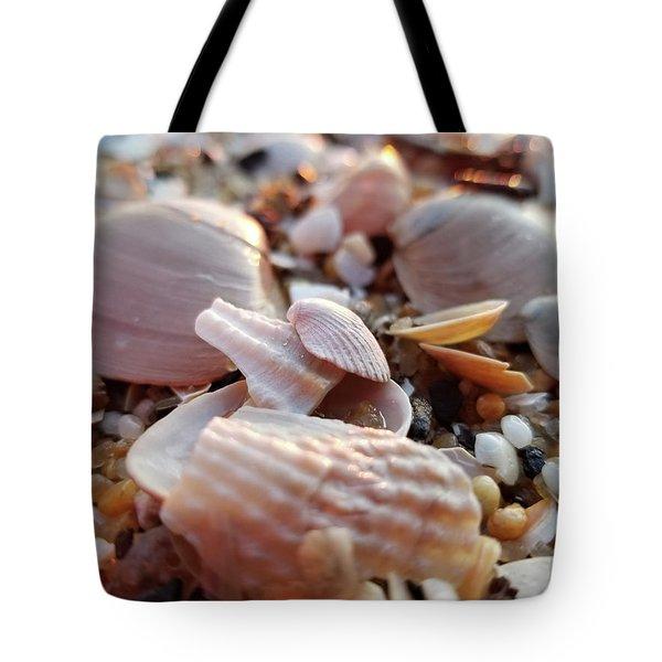 Seashells And Pebbles Tote Bag