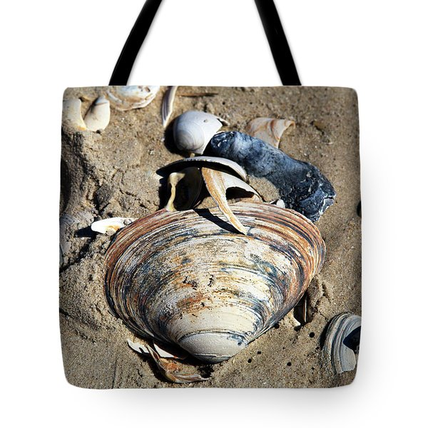 Tote Bag featuring the photograph Seashells At Holgate Beach by John Rizzuto