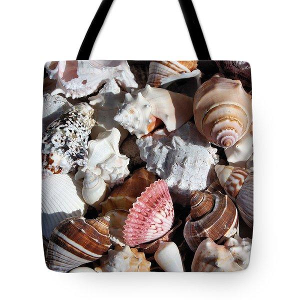 Seashells Tote Bag by Kristin Elmquist