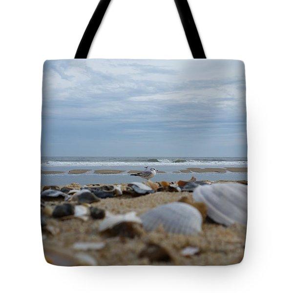 Seashells Seagull Seashore Tote Bag