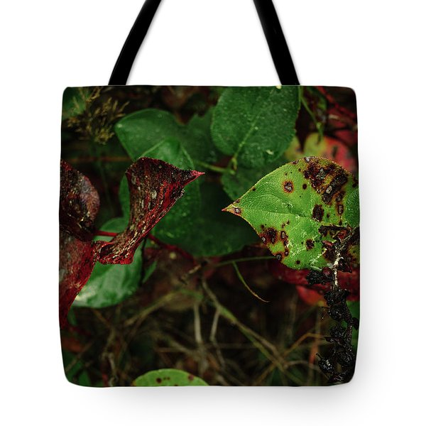 Season Color Tote Bag