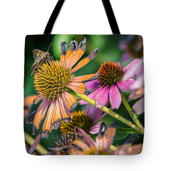 Tote Bag featuring the photograph Season Ending by Edward Peterson
