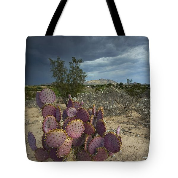 Season Of The Storm Tote Bag by Sue Cullumber