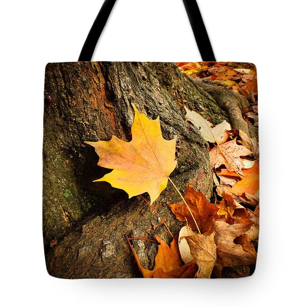 Seasonal Beauty  Tote Bag