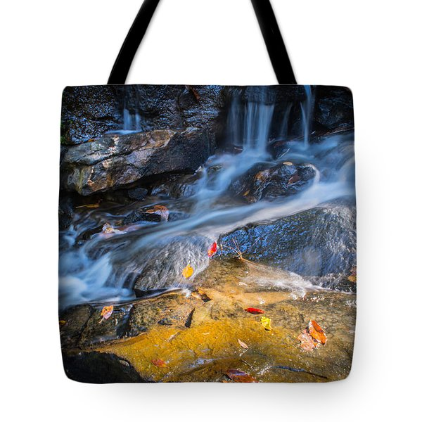 Seasons Collide Tote Bag