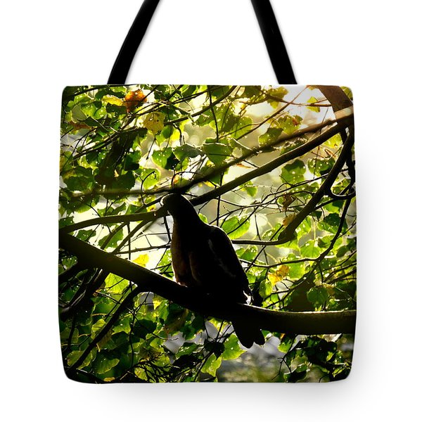 Tote Bag featuring the photograph Seasons Will Change by Bernd Hau