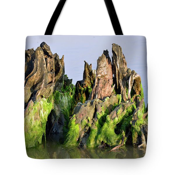 Seaweed-covered Beach Stump Tote Bag by Bruce Gourley