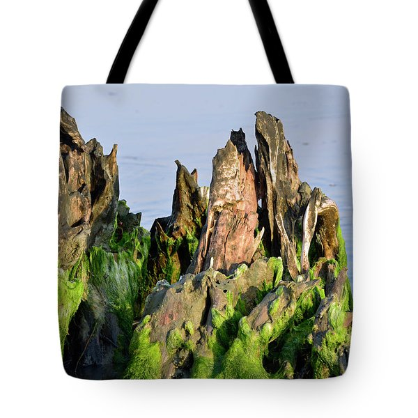 Seaweed-covered Beach Stump Mountain Range Tote Bag by Bruce Gourley