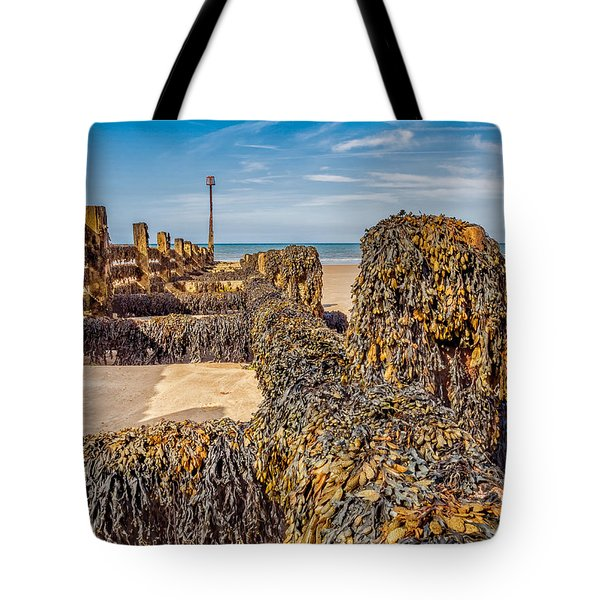 Seaweed Covered Tote Bag