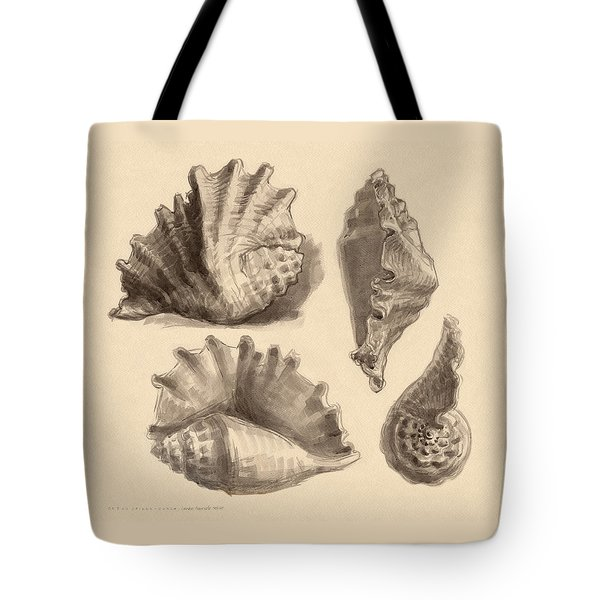 Tote Bag featuring the painting Seba's Spider Conch by Judith Kunzle