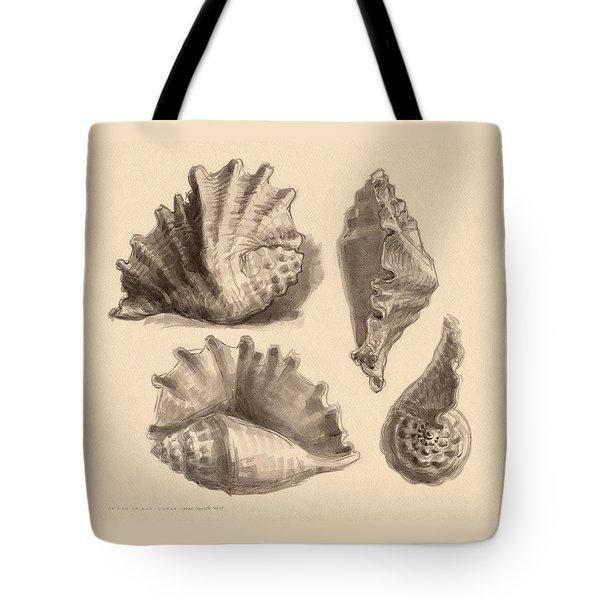 Seba's Spider Conch Tote Bag