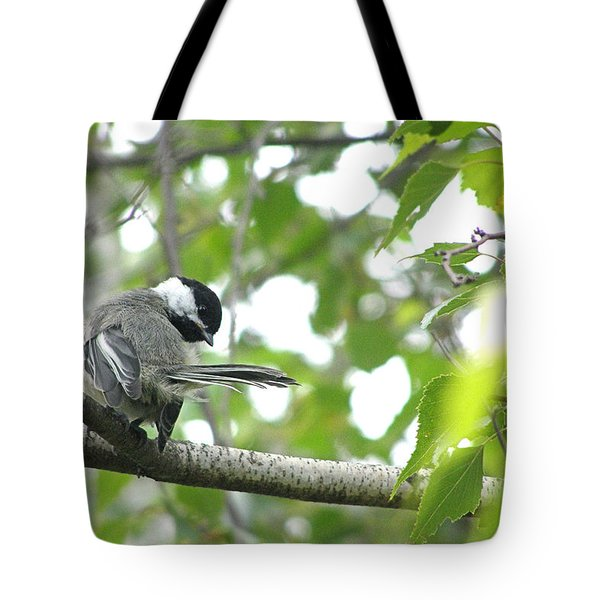 Tote Bag featuring the photograph Second Glance by Angie Rea