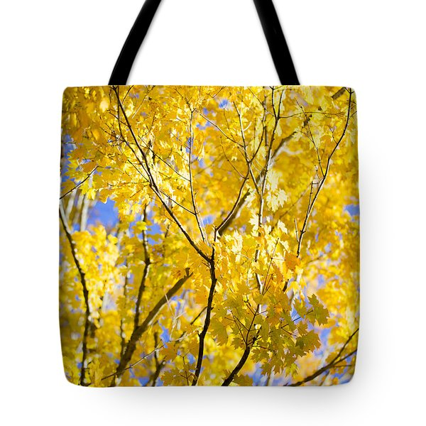 Second Spring Tote Bag