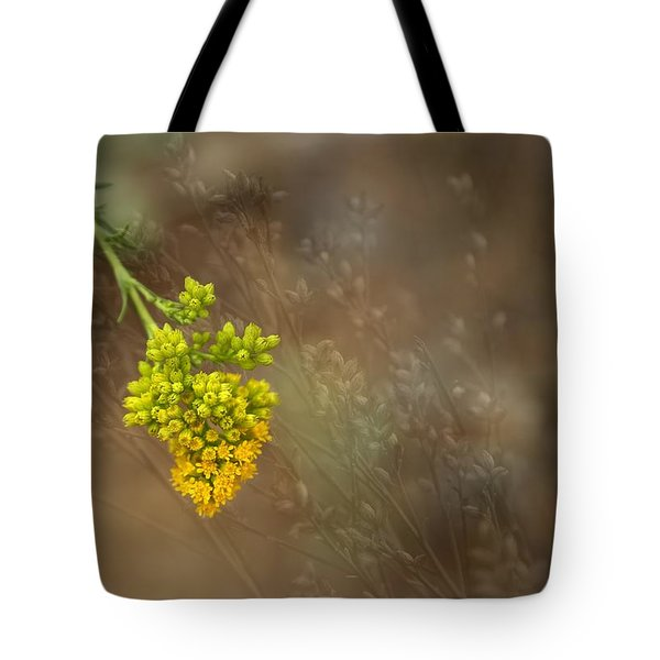 Second Summer Tote Bag