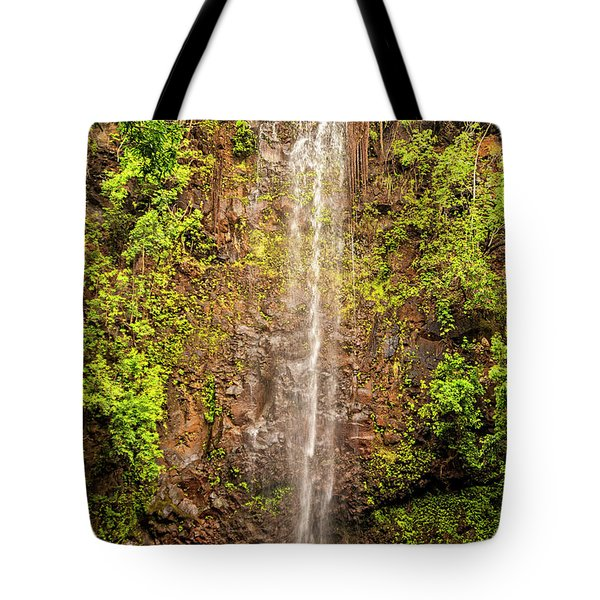 Secret Falls Tote Bag by Brian Harig